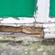 dry rot repair